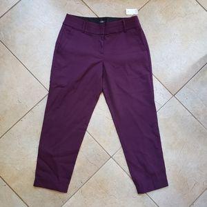 Ann Taylor LOFT Purple Trouser Pants